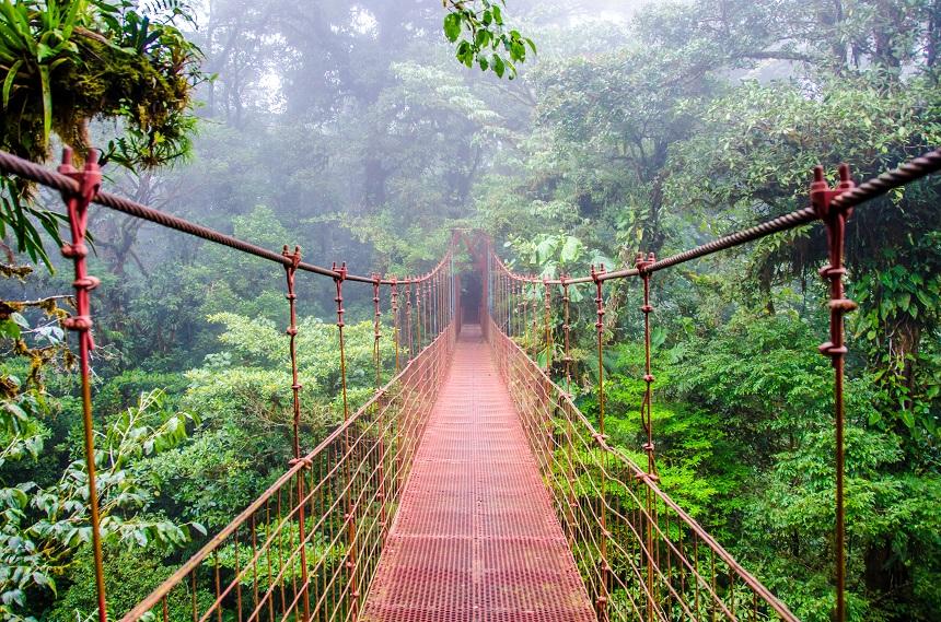 Day 4: Arenal - Monteverde